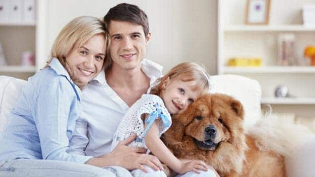 Wills & Trusts dog-young-family Direct Wills Croydon